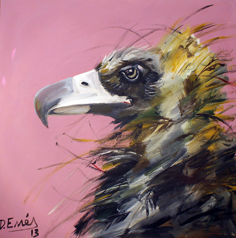 Vulturine